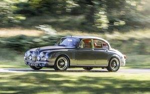 Callum - Jaguar