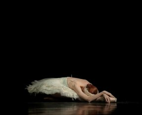 "Ulyana Lopatkina, Mariinsky Ballet, ""The Dying Swan"" at 2010 Dance Open Ballet Festival, Saint Petersburg"